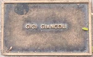 Giancoli, Gigi