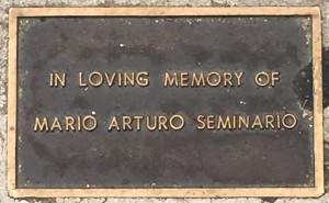 Seminario, Mario Arturo